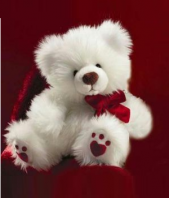 Cute Teddy Bear Gifts toIndia, teddy to India same day delivery