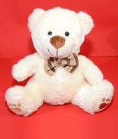 Fluffy White Soft Toy Gifts toIndia, teddy to India same day delivery