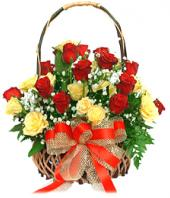 24 Yellow and Red Roses Gifts toBrigade Road,  to Brigade Road same day delivery