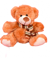 Brown Soft Toy Gifts toIndia, teddy to India same day delivery