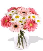 Fondest Affections Gifts toCottonpet, flowers to Cottonpet same day delivery