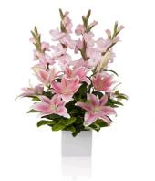 Blushing Beauty Gifts toHBR Layout, flowers to HBR Layout same day delivery
