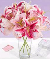 A Gentle Touch Gifts toRT Nagar, flowers to RT Nagar same day delivery