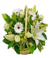 Elegant Love Gifts toCottonpet, flowers to Cottonpet same day delivery