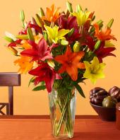 Colour Fiesta Gifts toCunningham Road, flowers to Cunningham Road same day delivery