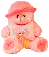 1099 Gifts toIndia, toys to India same day delivery