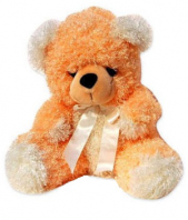 Curly Bear Gifts toIndia, teddy to India same day delivery
