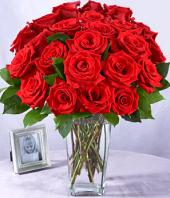 24 Red Roses Gifts toBrigade Road, flowers to Brigade Road same day delivery