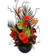 Spring Fusion Gifts toGanga Nagar, flowers to Ganga Nagar same day delivery