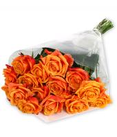 Shades of Autumn Gifts toBanaswadi, flowers to Banaswadi same day delivery