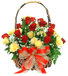 24 Yellow and Red Roses