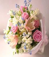 Serenity Gifts toDomlur, flowers to Domlur same day delivery
