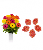 Color full Flowers and Floral Designed Earthen Diyas Gifts toIndia, Combinations to India same day delivery
