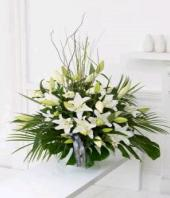 Heavenly White Gifts toAgram, flowers to Agram same day delivery