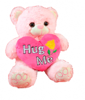 Hug Me Teddy Gifts toIndia, teddy to India same day delivery