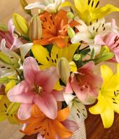 Colourful Bliss Gifts toIndia, flowers to India same day delivery