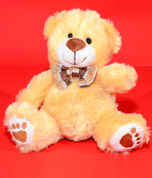 Best Friend Soft Toy Gifts toIndia, teddy to India same day delivery