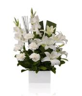 Casablanca Gifts toIndia, sparsh flowers to India same day delivery