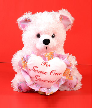 For Someone Special Teddy