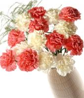 Pink and White Carnations Gifts toChamrajpet, flowers to Chamrajpet same day delivery