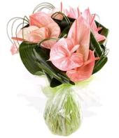 Pink Paradise Gifts toHAL, flowers to HAL same day delivery